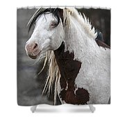 Shaman Portrait Shower Curtain