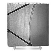 Shape No.3 Light Gray Scale Shower Curtain