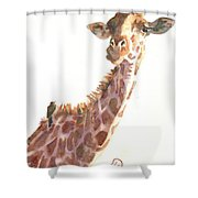 Sharing Shower Curtain