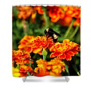 Sharing The Nectar Of Life 02 Shower Curtain
