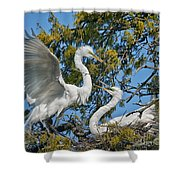 Sharing The Nest Shower Curtain