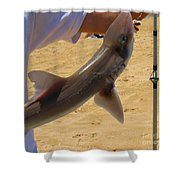 Baby Shark Shower Curtain