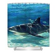 Shark In Depth Shower Curtain