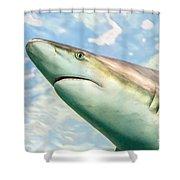 Shark Profile Shower Curtain