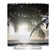 Sharks Cove Sunset Shower Curtain by Brandon Tabiolo