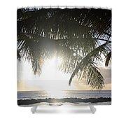 Sharks Cove Sunset Shower Curtain
