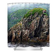 Sharp Jagged Rocks  Shower Curtain