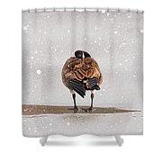Shawnee Park Geese Shower Curtain