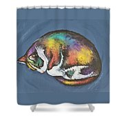 She Purrs In Color Shower Curtain