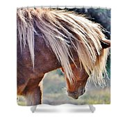 She Tossed Her Mane - Wild Pony Of Assateague Shower Curtain