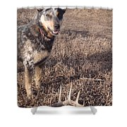 Shed Hunting Shower Curtain