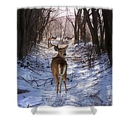 Shedding Time Shower Curtain