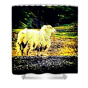 Don't You Look At Me With That Sheep Attitude  Shower Curtain