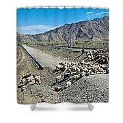 Sheep Crossing The Road To Shigatse-tibet  Shower Curtain