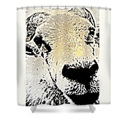 What A Sheep Face To Have   Shower Curtain
