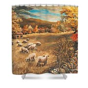 Sheep In October's Field Shower Curtain
