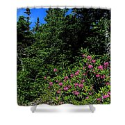 Sheep Laurel Shrub Shower Curtain