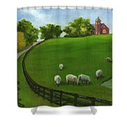 Sheep May Safely Graze Shower Curtain
