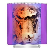 The Sheep Feel The Shame But It Isn't Her Fault  Shower Curtain