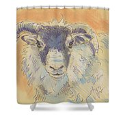 Sheep With Horns Shower Curtain