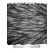 Sheepskin Shower Curtain