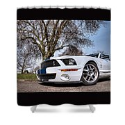 Shelby On The Village Green Shower Curtain