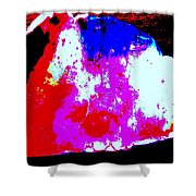 Shell Abstract Shower Curtain