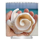 Shell In Hand Cozumel Shower Curtain