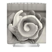 Shell On Cozumel Shower Curtain