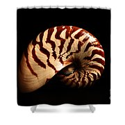 Shell Pose  Shower Curtain