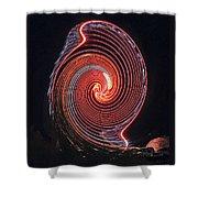 Shell Swirl Shower Curtain
