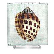 Shell Treasure-b Shower Curtain