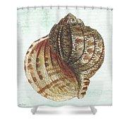 Shell Treasure-c Shower Curtain