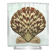 Shell Treasure-d Shower Curtain