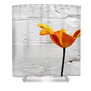 Seriously Orange - Sheltered Shower Curtain