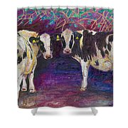 Sheltering Cows Shower Curtain