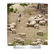 Shepherd With Sheep Shower Curtain