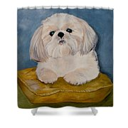 Shihtzu Shower Curtain