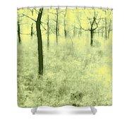 Shimmering Spring Day Shower Curtain