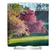 Shine The Light On Me Shower Curtain