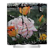 Shinning Roses Photo Manipulation Shower Curtain