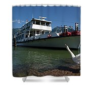Ship And Swan Shower Curtain