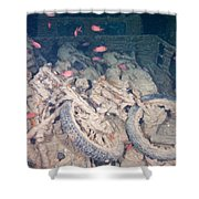 Motorbikes On A Ship Wreck Shower Curtain