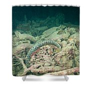 Ship Wreck And Motorbikes Shower Curtain