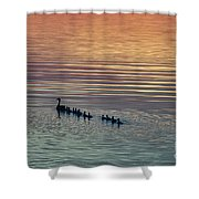 Shipshewana Lake Evening Shower Curtain