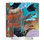 Shipwreck Harbor Shower Curtain