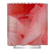 Shirley Poppies Shower Curtain