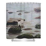 Shirley's Dog Shower Curtain