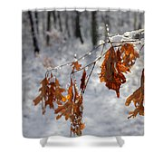 Shivering Oak Leaves Shower Curtain