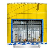 Shop Window - Mexico - Photograph By David Perry Lawrence Shower Curtain